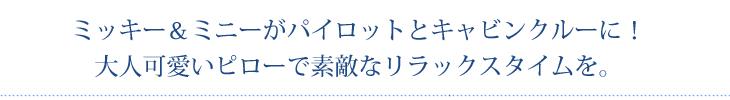 【DISNEY TRAVEL-SKY SELECTION-】